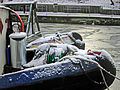 Narrowboats in the snow - geograph.org.uk - 1656409.jpg