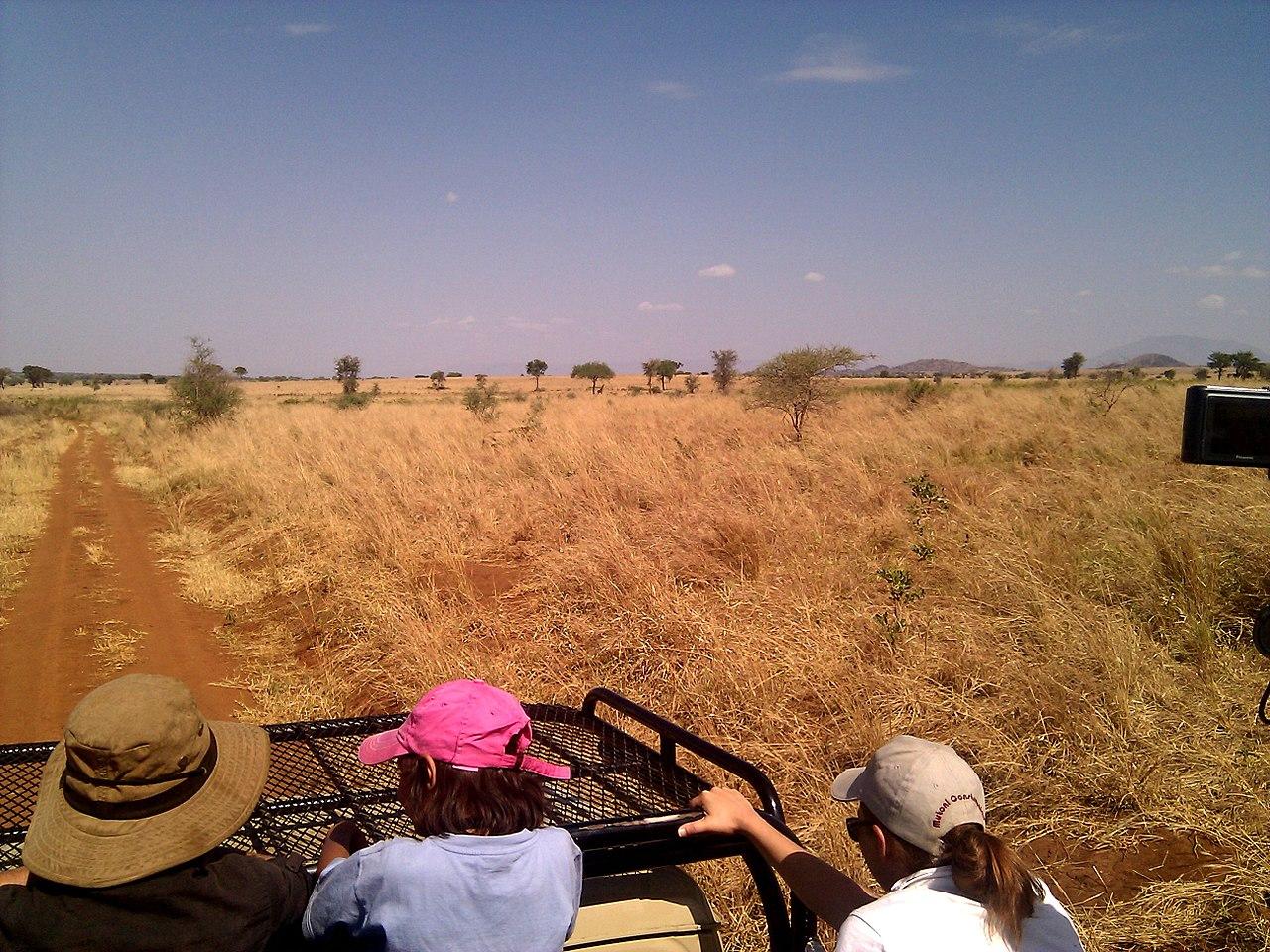 Aree protette ugandesi: Parco Nazionale Kidepo Valley di grande fascino per la sua remota posizione.