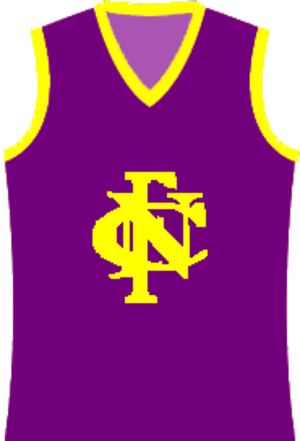 Nathalia Football Club - Image: Nathalia Football Club jumper