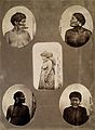 Native people from Brazil Wellcome V0031227.jpg