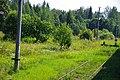 Nelidovsky District, Tver Oblast, Russia - panoramio (4).jpg