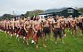 New Zealand - Maori rowing - 8487.jpg