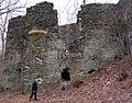 Niesytno - ruiny zamku i pałacu w Płoninie. Foto Barbara Maliszewska.JPG