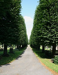 Nordlig begravningsplatsen3.   JPG