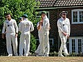 Nuthurst CC v. Henfield CC at Mannings Heath, West Sussex, England 019.jpg