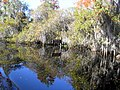 Okefenokee Swamp Entry Folkston GA - panoramio.jpg