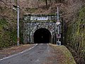 Old Isegami Tunnel, Toyota 2013.jpg