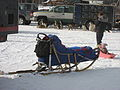 Old School Sled (2311798859).jpg