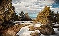 Oregon Badlands Wilderness (32674817705).jpg