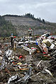 Oso Mudslide 28 March 2014 search and rescue.jpg