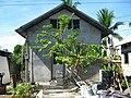 Our house - panoramio (1).jpg