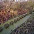 Overzicht van sloot met betonblokken - Frederiksoord - 20382089 - RCE.jpg
