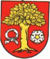 POL Dębe (pow czarnkowsko-trzcianecki) COA.png