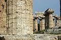 Paestum un tempio.jpg