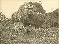 Panama and the canal in picture and prose (1913) (14782855002).jpg