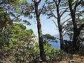 Parco Astarita - panoramio (2).jpg