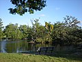 Park Bench at Audubon Lagoon.jpg