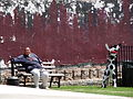 Park Scene with Woman and Cow Sculpture - Downtown Memphis - Tennessee - USA.jpg