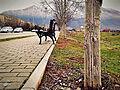 Parku..jpg