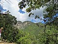 Paro Taktsang, Taktsang Palphug Monastery, Tiger's Nest -views from the trekking path- during LGFC - Bhutan 2019 (308).jpg