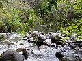 Parque Nacional Saltos del Petrohue.jpg