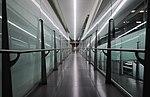 Pasillo aeropuerto.jpg