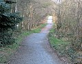 Path, Clandeboye (3) - geograph.org.uk - 754813.jpg