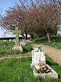 Path through churchyard - geograph.org.uk - 773305.jpg