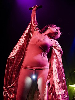 Peaches Live in LA 2009.jpg