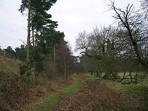 Peddars Way - Image: Peddars Way Knettishall Heath