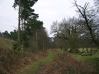 Peddars Way - Image: Peddars Way Knettishall Heath