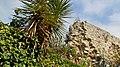 Pedra i vegetació (Girona) - panoramio.jpg