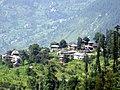 Percha village - panoramio - shashishambhu.jpg