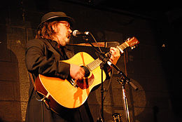 Peter Case at McCabe's, 2008.jpg