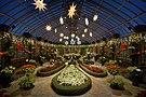 Phipps Conservatory winter 2015 Broderie Room.jpg