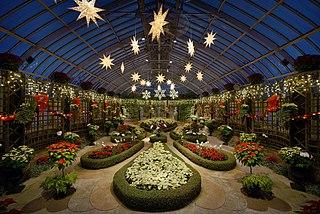 320px-Phipps_Conservatory_winter_2015_Broderie_Room.jpg?uselang=de
