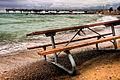 Picnic on the Beach (2837687765).jpg