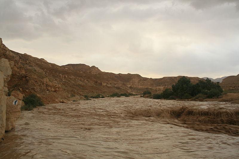 שיטפון: גל ראשון בנחל צין