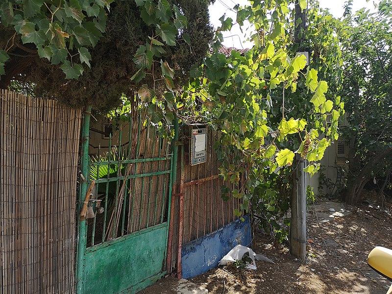 בית ברחוב הבנים 1 נחלת יהודה