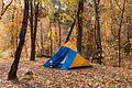 Pine Flat Campground.jpg
