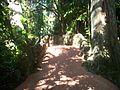 Pinecrest Gardens FL park path01.jpg