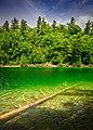 Pink Lake (42434382714).jpg