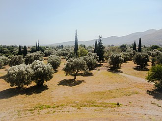 Marathon, Greece - Plain of Marathon