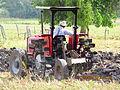 Ploughing at Shipyard Belize.jpg