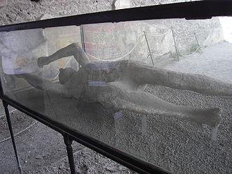 Pompeii macellum cast 5.jpg