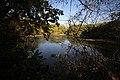Pond 1 LPPCHEA.jpg