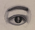Portrait as a reflection in an eye (HS85-10-19879).jpg