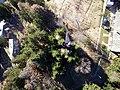 Pradomaso in volo - panoramio.jpg