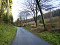 Private forestry road in House Dale - Dalby Forest - geograph.org.uk - 290417.jpg