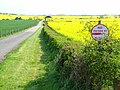 Private road near Shotton - geograph.org.uk - 167547.jpg